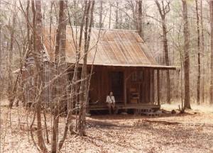 cabin crop