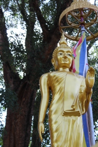 Buddhism in Sri Lanka