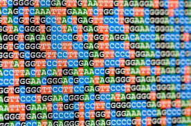 DNA as word as DNA as word as DNA as word as DNA as word as DNA as word as DNA as word as DNA